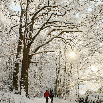 Couple Walking in the Snowy Woods by AlysonFennell