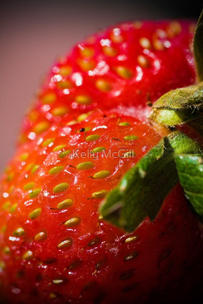 Wild Strawberries by Kelly McGill
