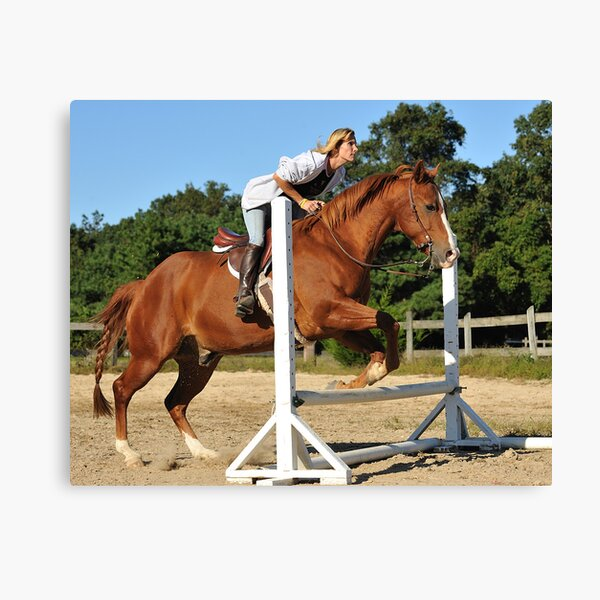 The Quarter Horse Jump Canvas Print