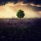 Green Tree  by baxiaart