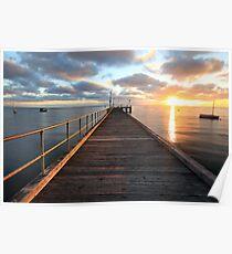 Morning Glory, Mornington Peninsula, Australia Poster