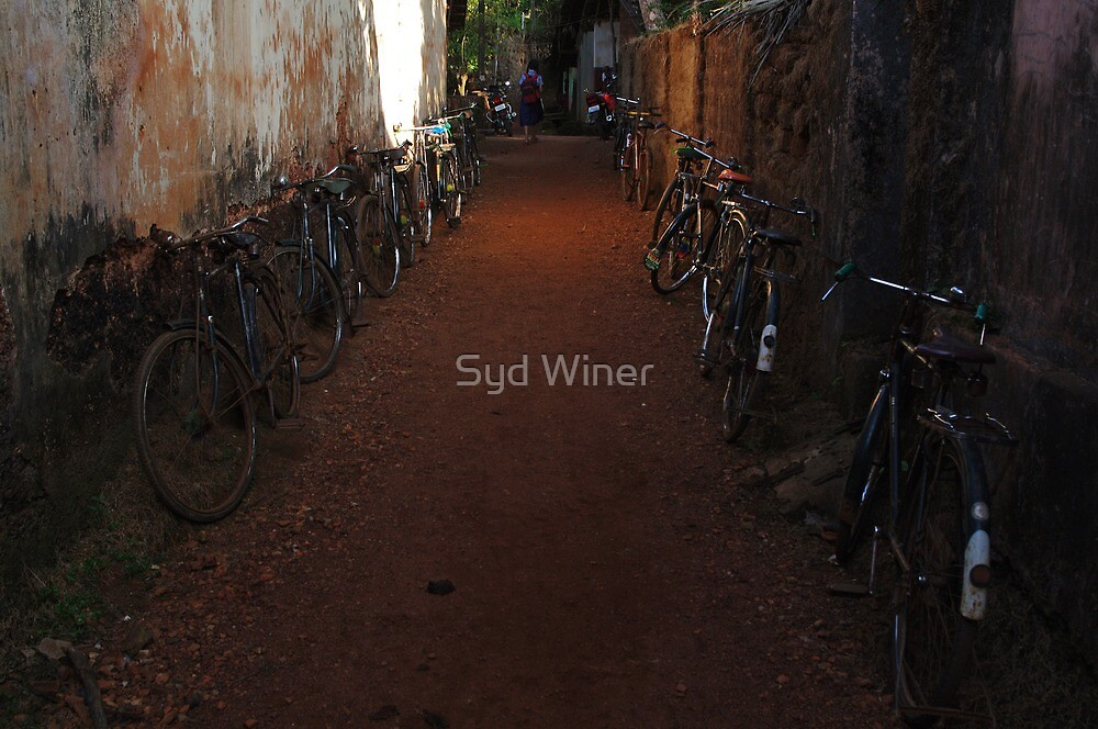 Cycles by Syd Winer