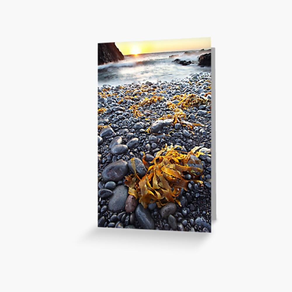 Cape Schank, Mornington Peninsula, Australia Greeting Card