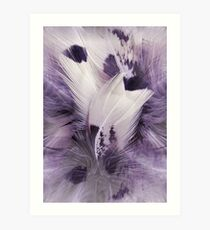 Feather Portrait Art Print
