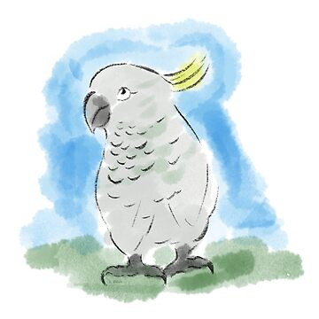 cockatoo by AHELENE