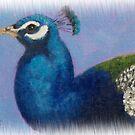 Peacock by Susan Fox