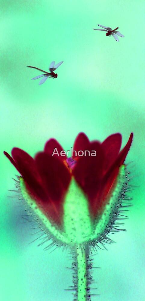 Flora la Alien  by Aerhona