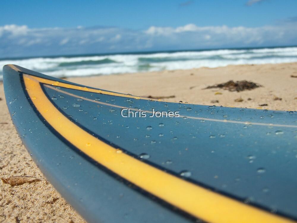 Wet Surfboard by Chris Jones