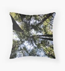 Gazing upwards in the Avenue of the Giants Throw Pillow