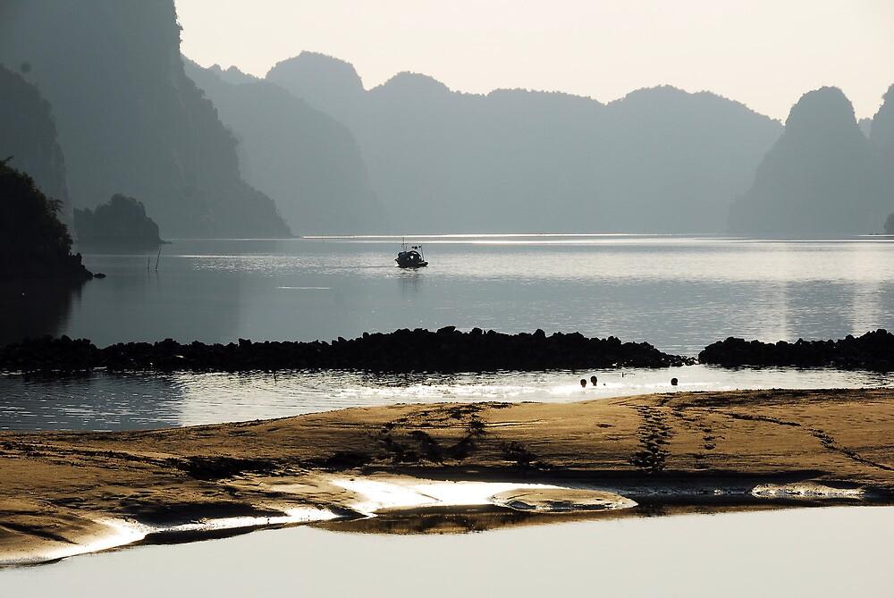 Vietnam  by noelmiller