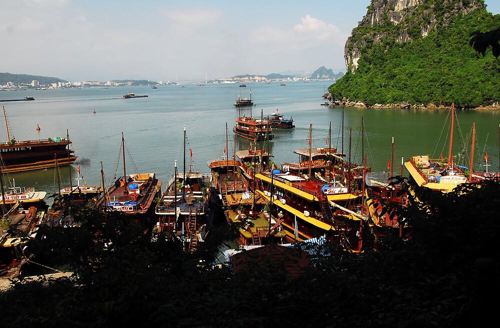 Vietnam Sapa by noelmiller