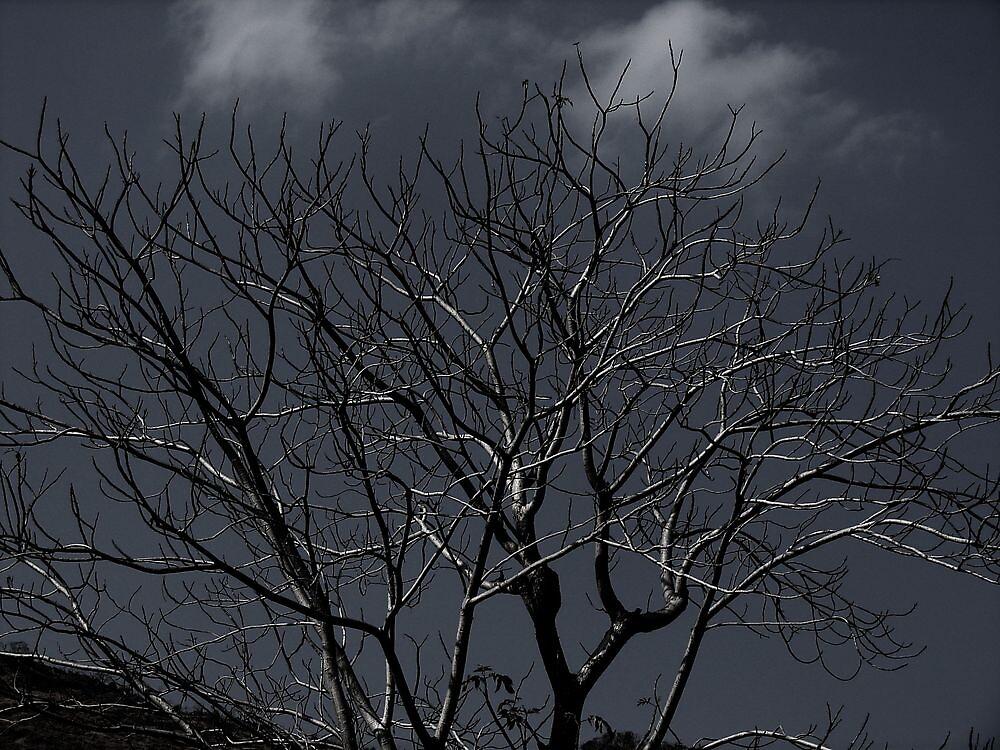 cursed tree by dynamo17