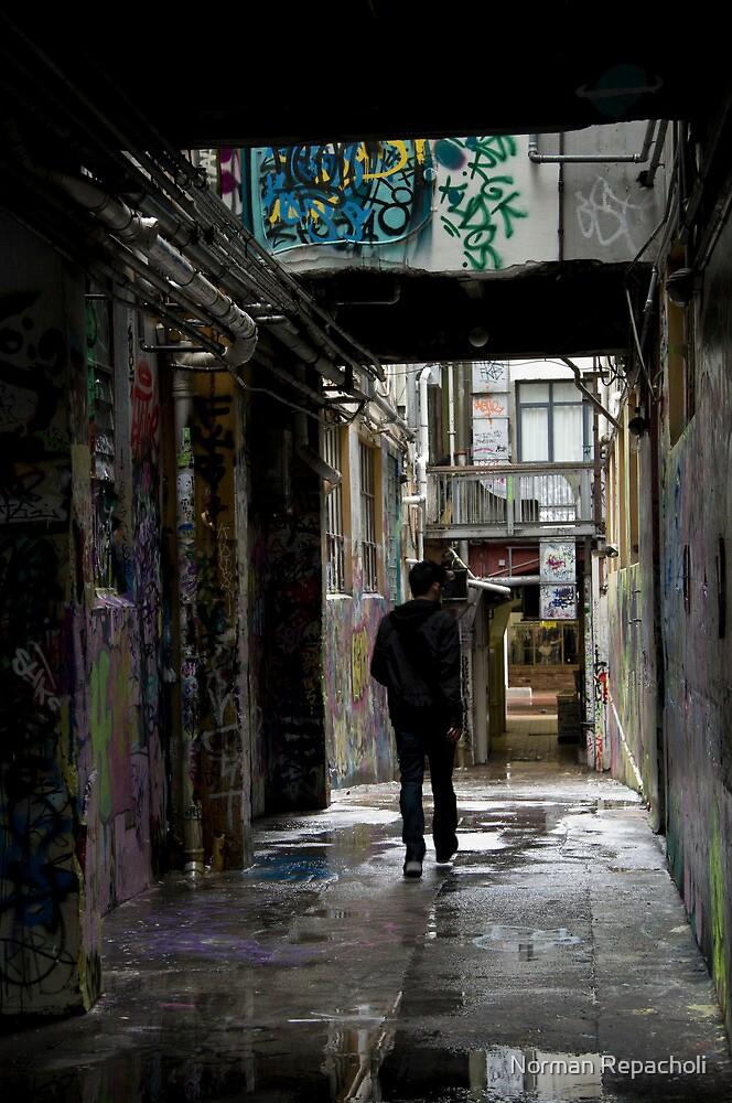Wellington Alley by Norman Repacholi