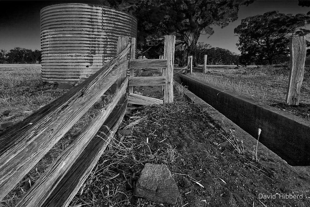 A rural scene. by David  Hibberd