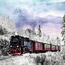 Winter Train by Dawn van Doorn