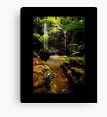 water fall paronella Canvas Print