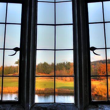 Autumn Window by ViczS