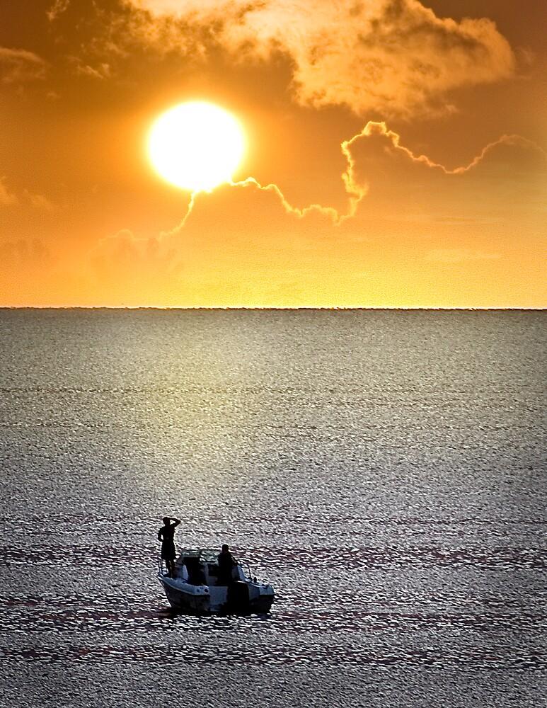 Drifting to the Sun by Stephen Warren