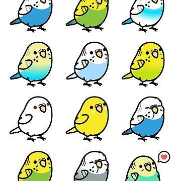 Chubby Budgies by birdhism