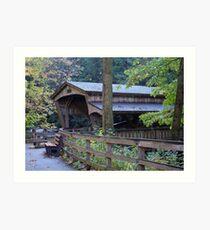 Mill Bridge Art Print
