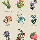Hyrule Flora by raediocloud