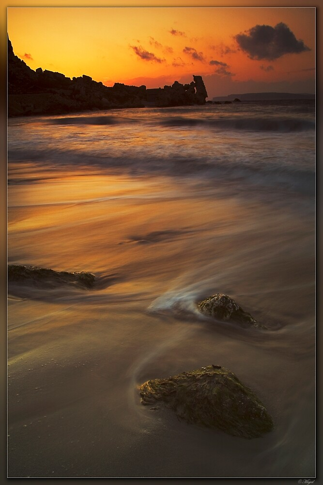 light and water by magal