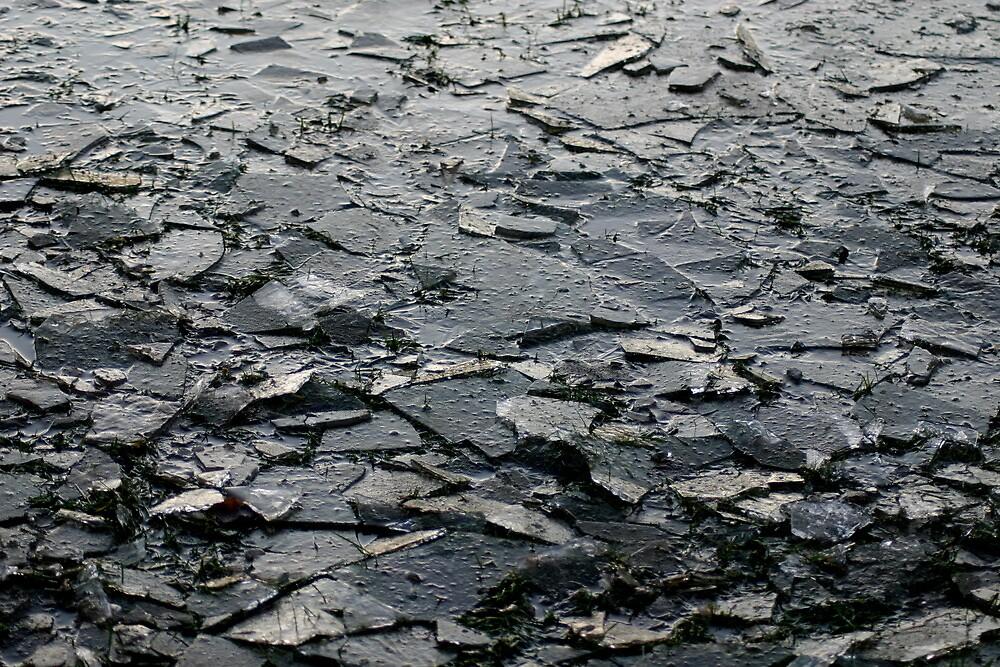 Ice by Richard Pitman