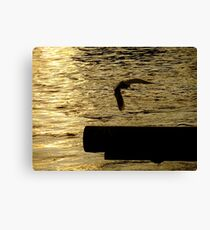Liquid Gold (The Thames at sunset) Canvas Print
