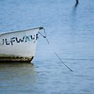 Row Ashore - Tampa, Florida by rjhphoto
