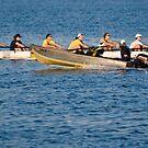 Rowing Hard - Tampa, Florida by rjhphoto