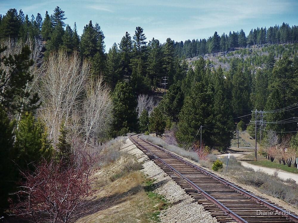 I Missed My Train!!!!!!!!!! by Diane Arndt