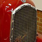 Alfa Romeo grill by evilcat