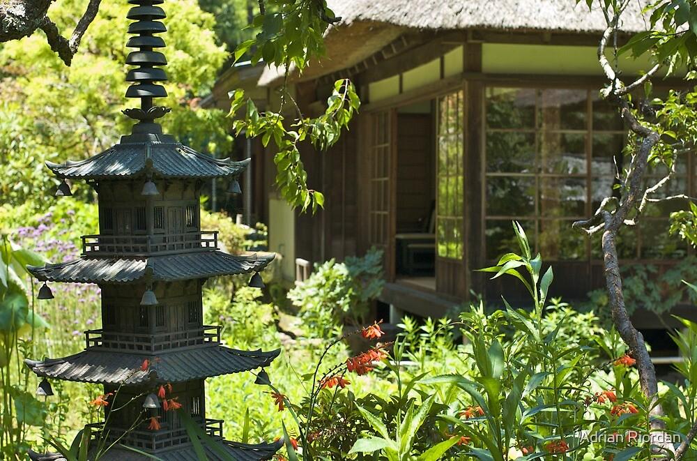 Jochi-ji; Kita-kamakura, Japan by Adrian Riordan