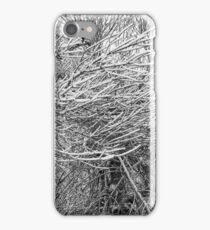 Force of Nature iPhone Case/Skin