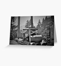 Mule, Camp 18, Oregon Greeting Card