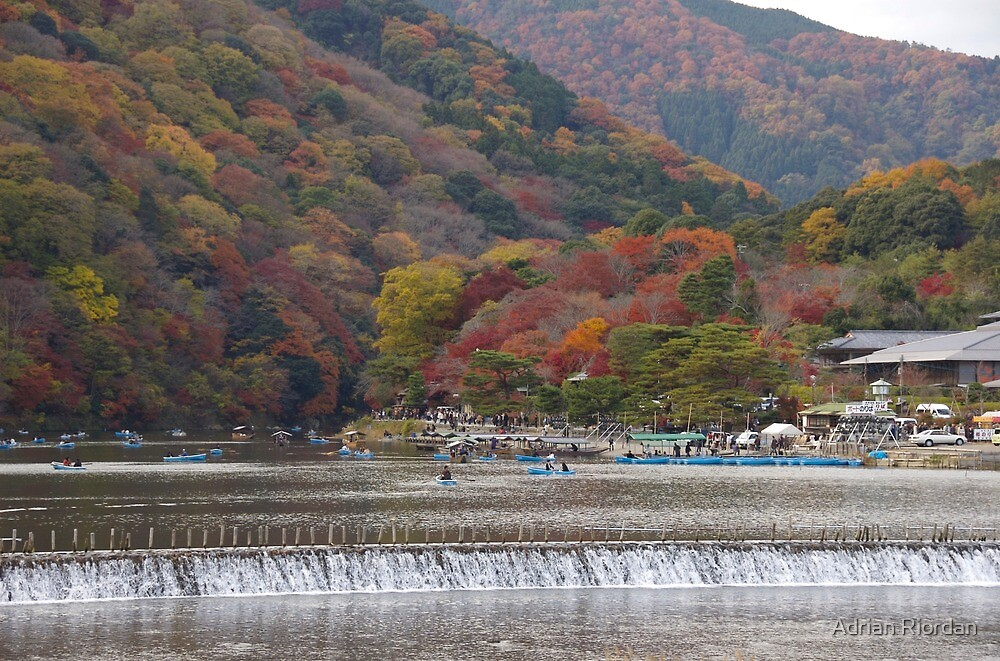 Autumn Colours; Irashiyama, Japan by Adrian Riordan