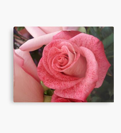 Speckled Rose Metal Print