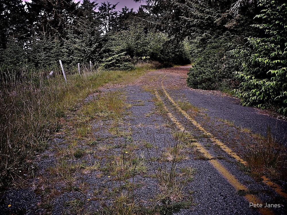 Reclamation, Cape Blanco, Oregon by Pete Janes