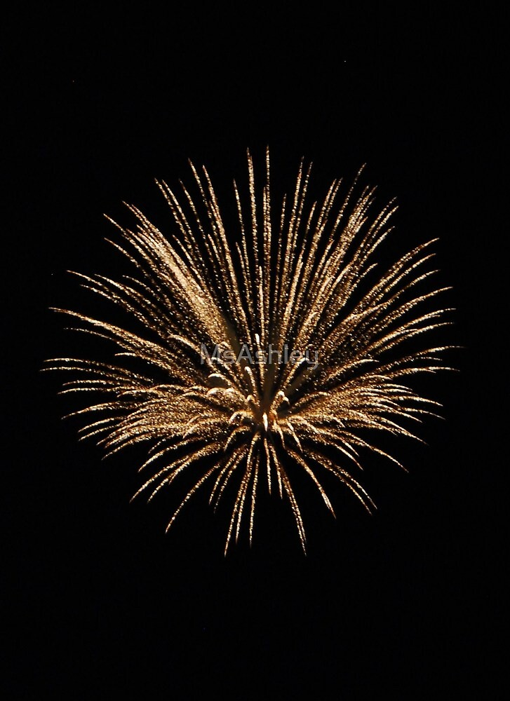 Shower of Golden Firework by MsAshley