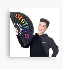 Lámina metálica James Charles Rainbow hermanas Merch