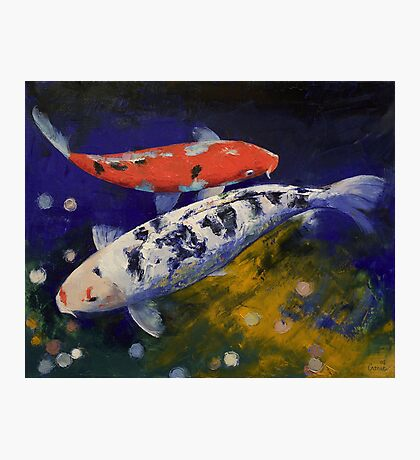 Bekko Koi Fish Photographic Print