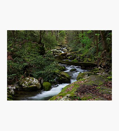 The Roaring Fork Photographic Print