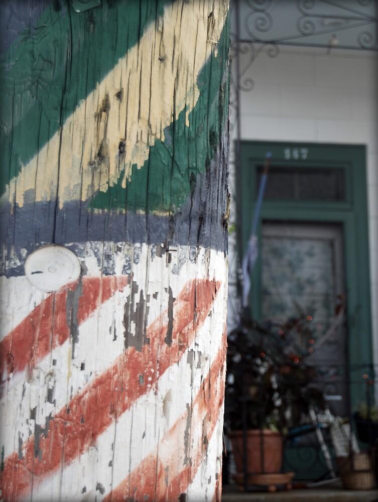 Rustic Pole of Algiers Yard by francierose