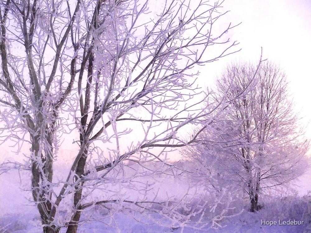 Winter Lace by Hope Ledebur