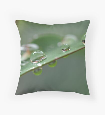 Tears from Above Throw Pillow