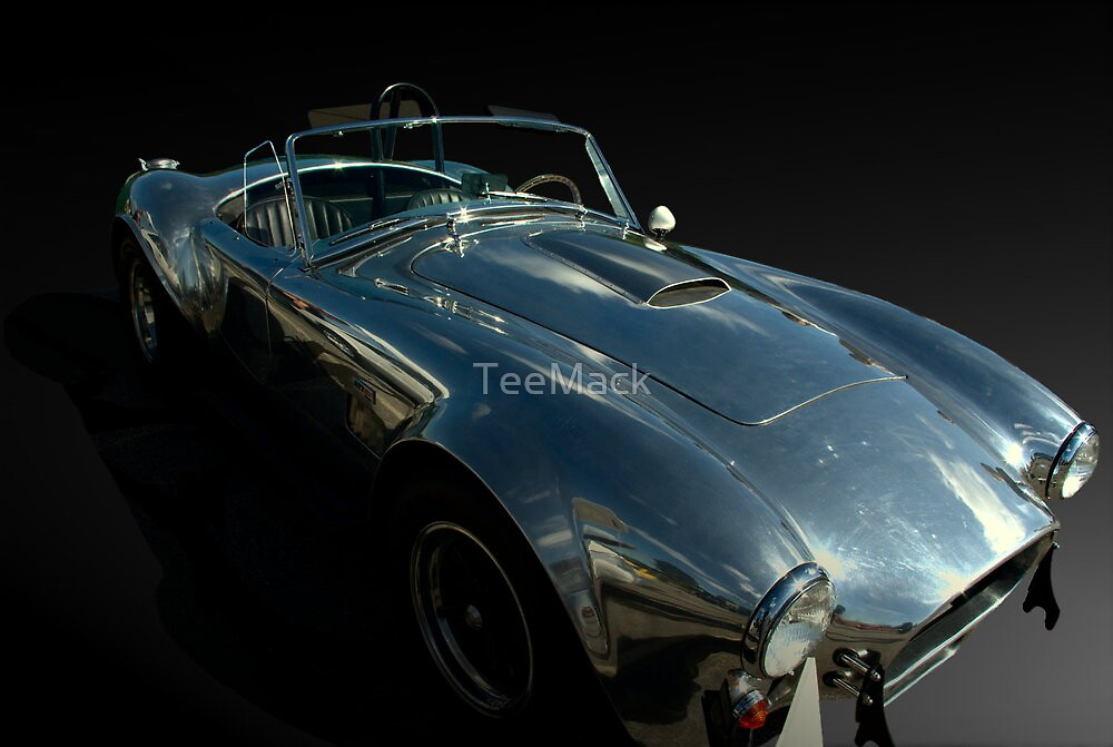 1965 Ford Cobra With All Aluminum Body by TeeMack