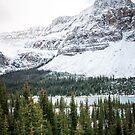 Icefields Parkway by Lisa  Kruchak