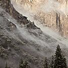 Yosemite National Park by Nickolay Stanev