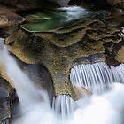 Mount Rainier River Rocks by Inge Johnsson
