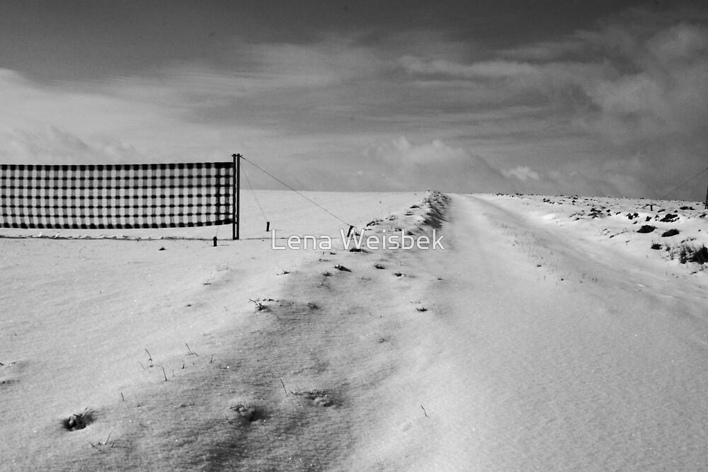 Winter fields by Lena Weiss